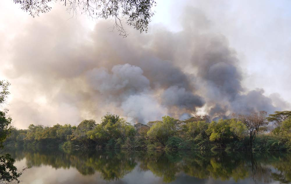 bushfire across the river zambia